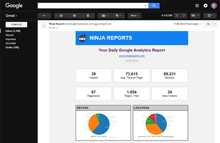 daily analytics report