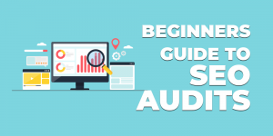 beginners guide to seo audits